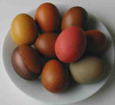 Teindre des œufs pour Pâques