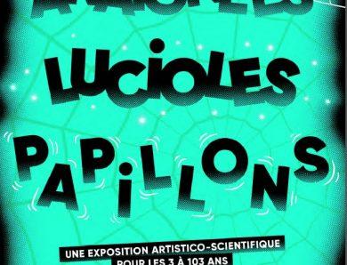 Araignées, Lucioles, Papillons au Musée en Herbes (Paris) : une exposition ludique dès 3 ans