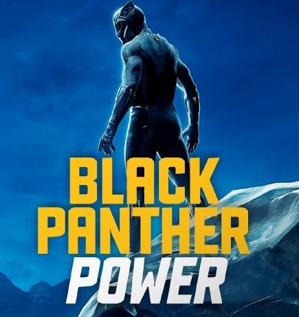 Black Panther Power écrit et réalisé par Sophie Pagès