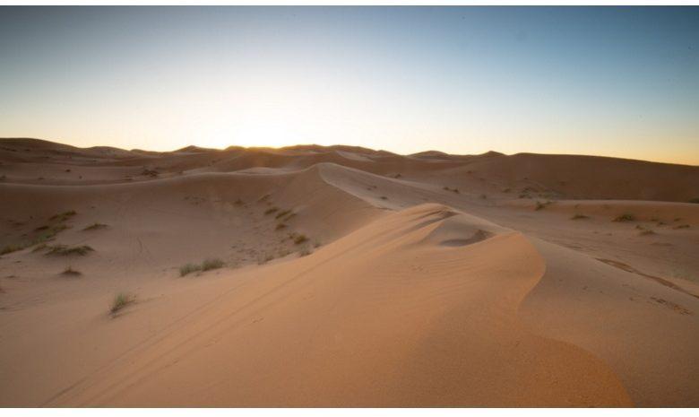 Destination Wild : les merveilles de l'Afrique sur National Geographic Wild