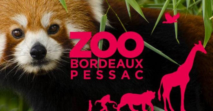 Visite au Zoo de Bordeaux-Pessac