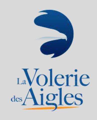 La Volerie des Aigles dans les ruines du château médiéval de Kintzheim (Alsace)
