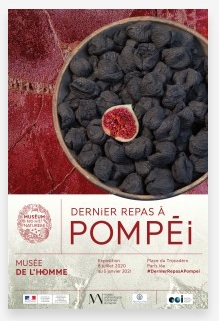 Dernier Repas à Pompéï au Musée de l'Homme (Paris)
