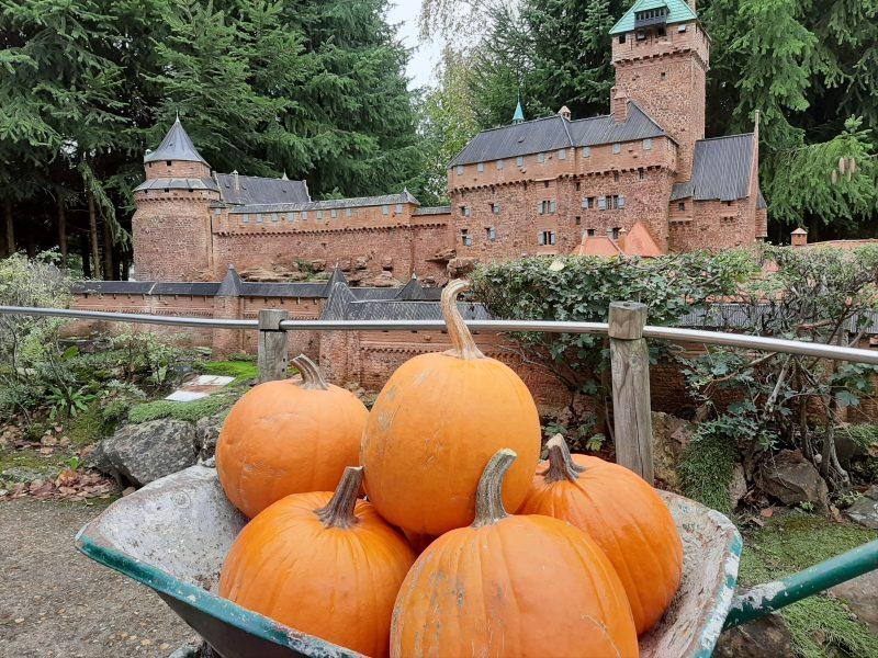 France Miniature fête Halloween 2020