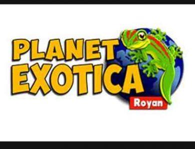 Planet Exotica à Royan (17) – Nouvelle Aquitaine