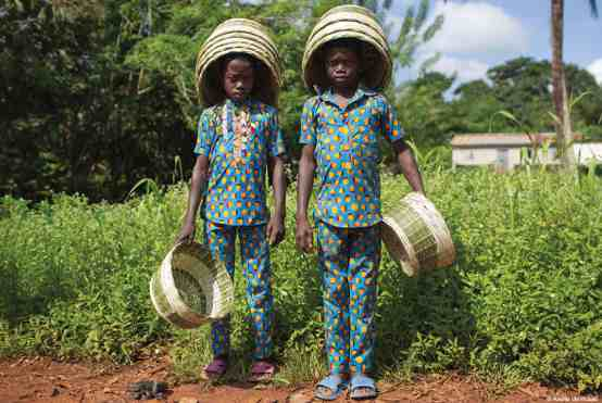 La Fondation Yves Rocher photographie la reforestation