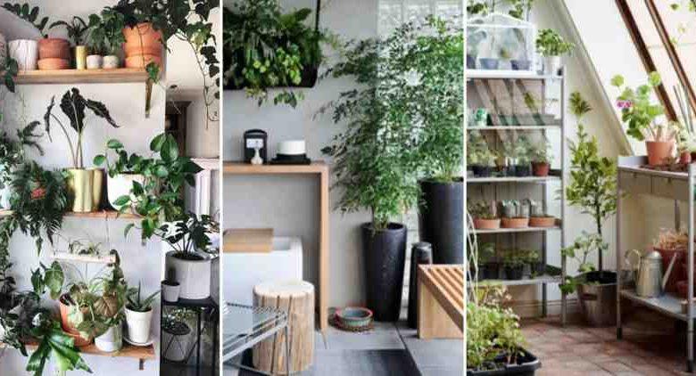 Créer son jardin intérieur