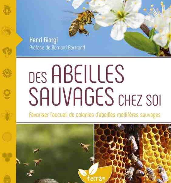 Des Abeilles Sauvages chez Soi : Favoriser l'accueil de colonies d'abeilles mellifères sauvages écrit par Henri Giorgi